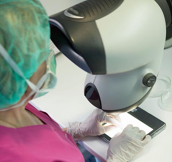implante inversion